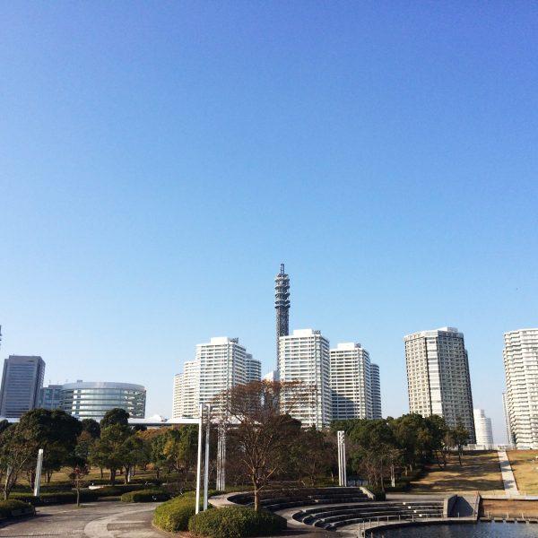 みなとみらいのタワーマンション街と公園の写真
