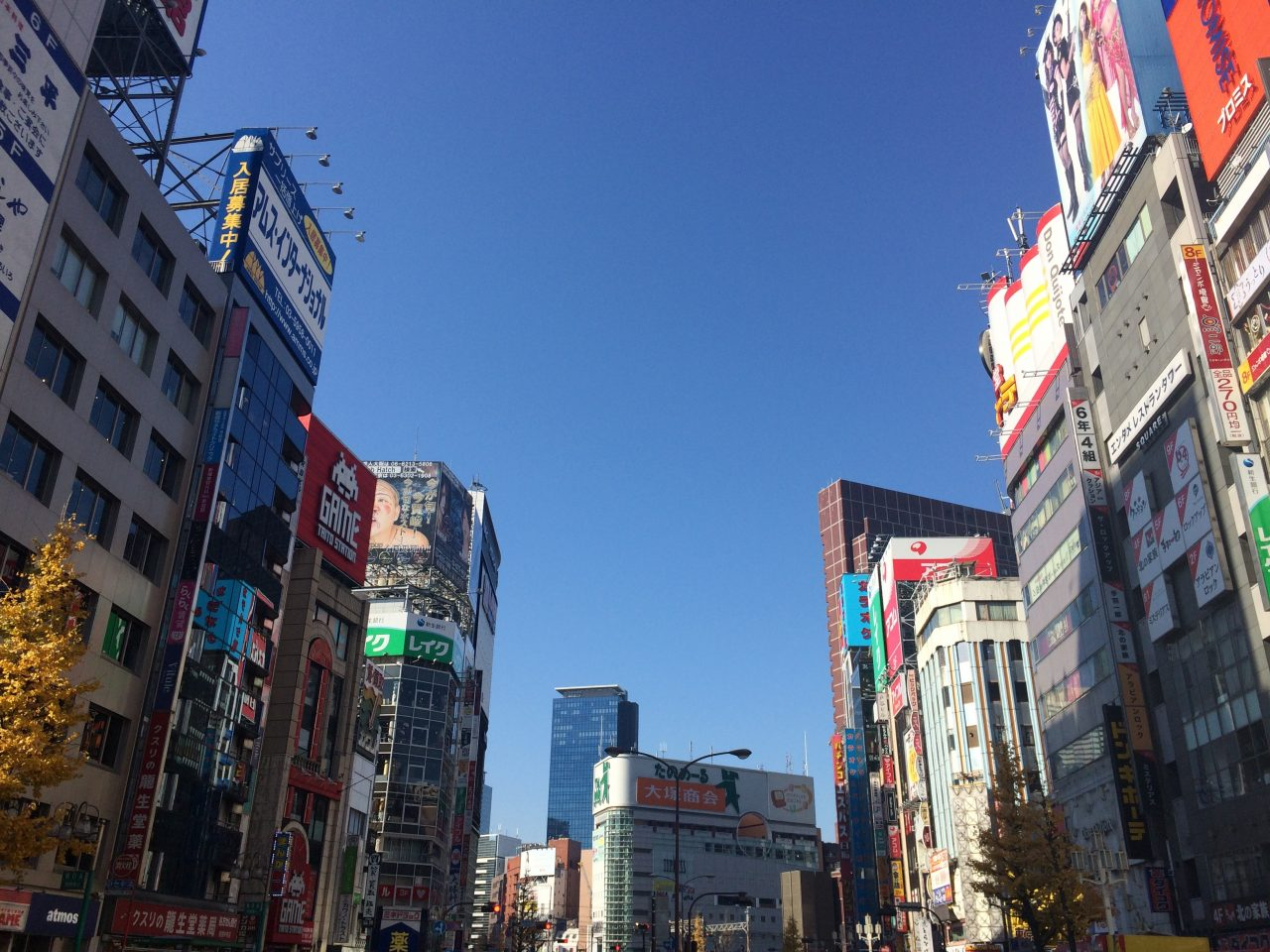 靖国通り沿いの新宿・歌舞伎町の雑居ビル街の写真