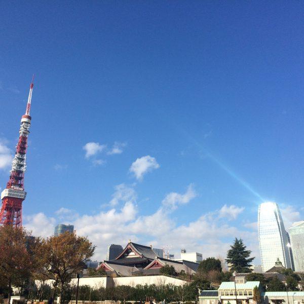 芝公園から見た東京タワーと増上寺と高層ビルの写真