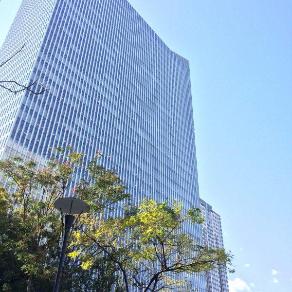 みなとみらいの高層オフィスビル街の写真