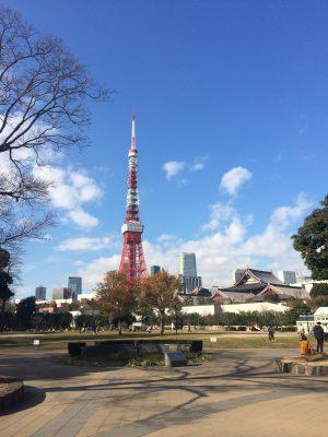 芝公園から見た東京タワーと増上寺の写真