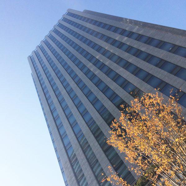 みなとみらいの高層オフィスビル街14の写真