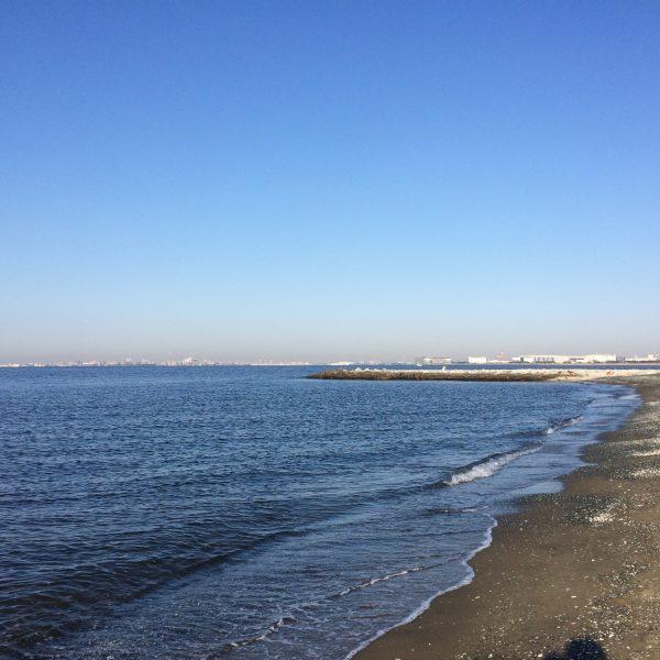 幕張海浜公園の砂浜1の写真