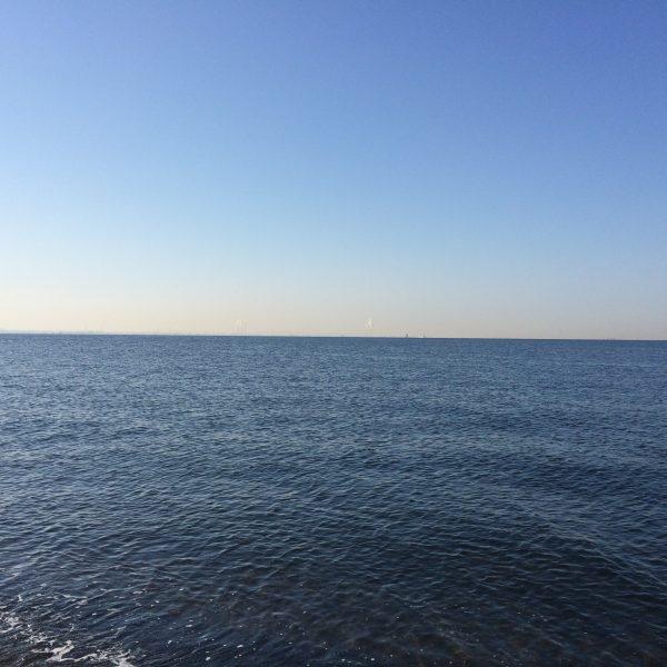 東京湾の海面の写真