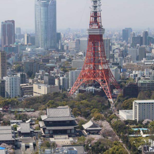 東京タワーと増上寺の写真