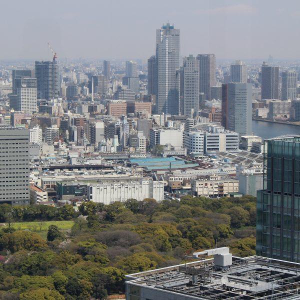 展望台から見た築地市場と東京の街並みの写真