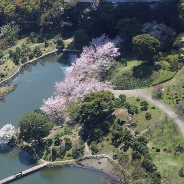 展望台から見た旧芝離宮恩賜庭園の写真