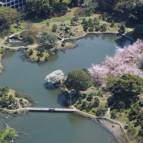展望台から見た旧芝離宮恩賜庭園3の写真