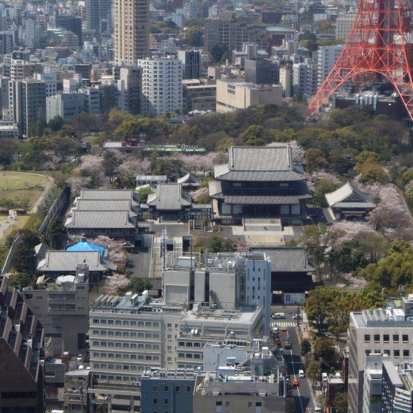 展望台から見た増上寺の写真