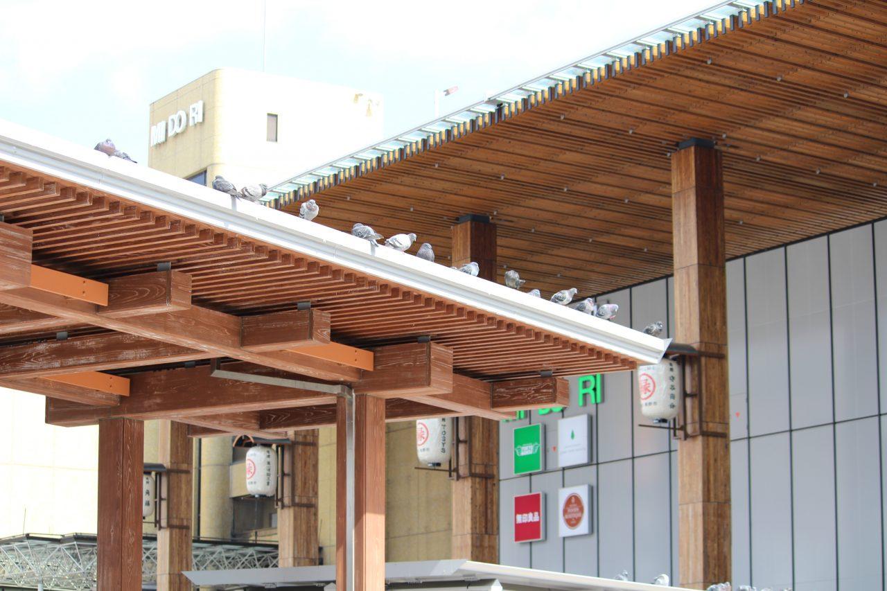 長野駅善光寺口とバス停の写真