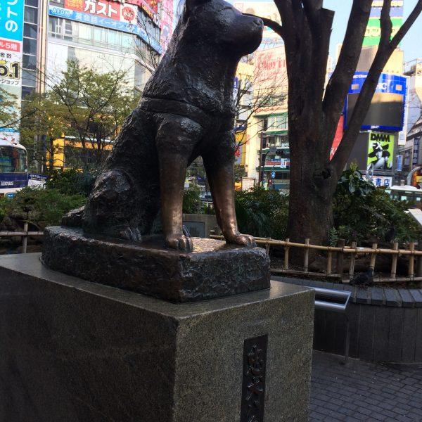 ハチ公銅像の写真