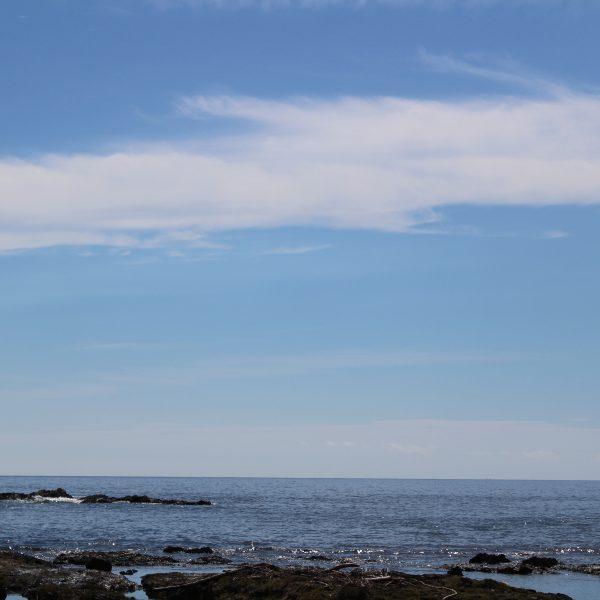 青空と海岸2の写真