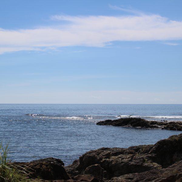 青空と海岸の写真