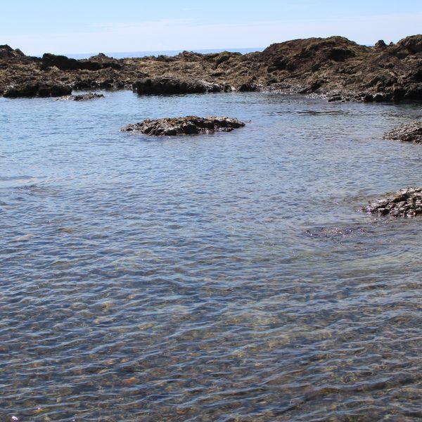春田浜海水浴場の岩礁2の写真