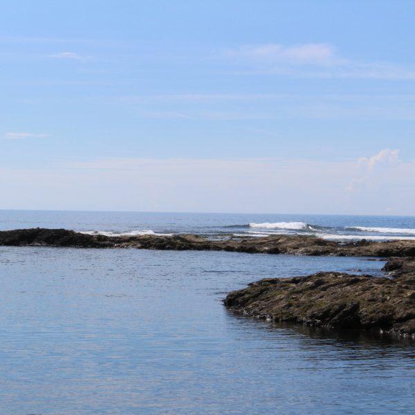 青空と海岸3の写真
