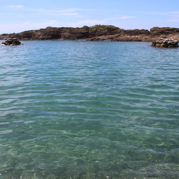 春田浜海水浴場の岩礁4の写真