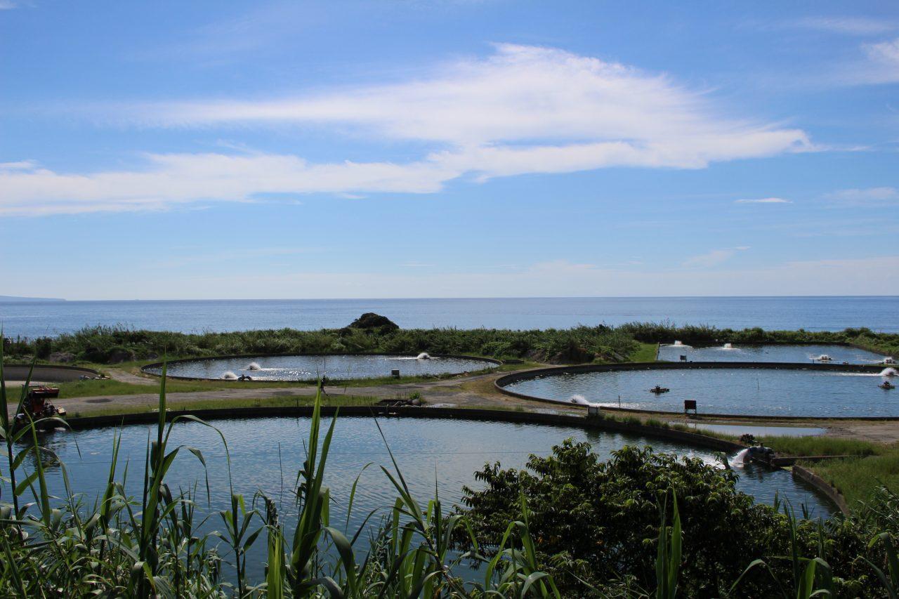 養殖場と青空の写真