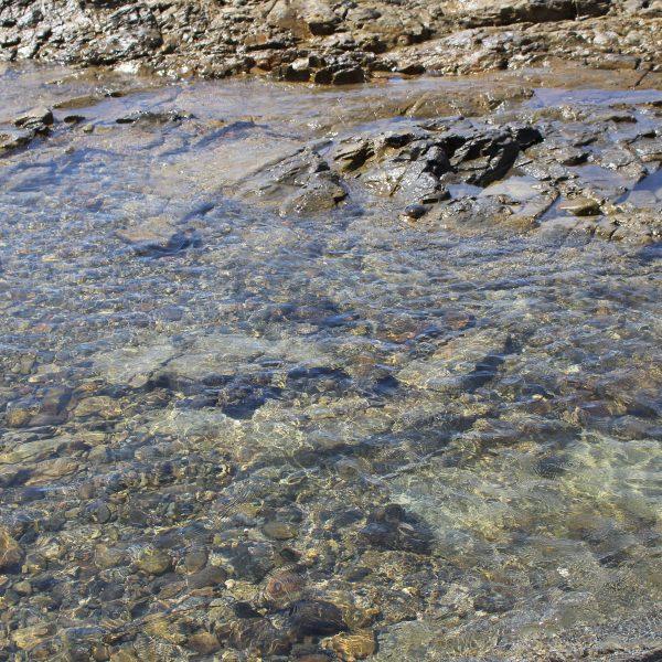 春田浜海水浴場の岩礁3の写真